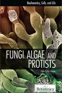 Fungi,Algae and Protists