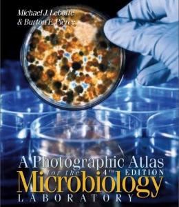 اطلس تصویری آزمایشگاه میکروبیولوژی