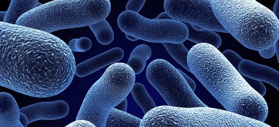 یک اطلس رنگي از میکروبیولوژی