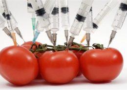 علوم و مهندسی مواد غذایی